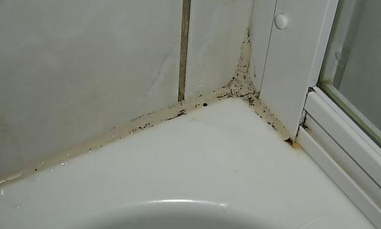 Duschkabine erneuern