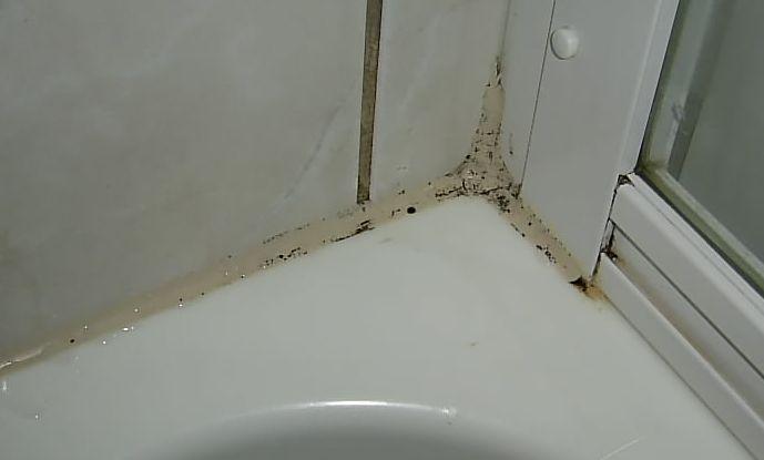 Dusche Silikon Erneuern : Dusche setzen sich leicht dunkle Flecken fest. Anfangs l?sst sich